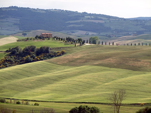 The rolling hills of Tuscany in Italy