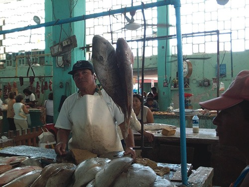 Expatriates and locals alike visit Progreso's fishmonger