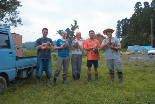 Japan volunteer WWOOF participants with ducks