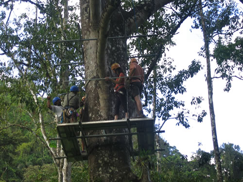 In the trees rappelling in Costa Rica
