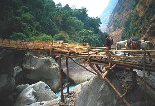 Bamboo bridge in Nepal