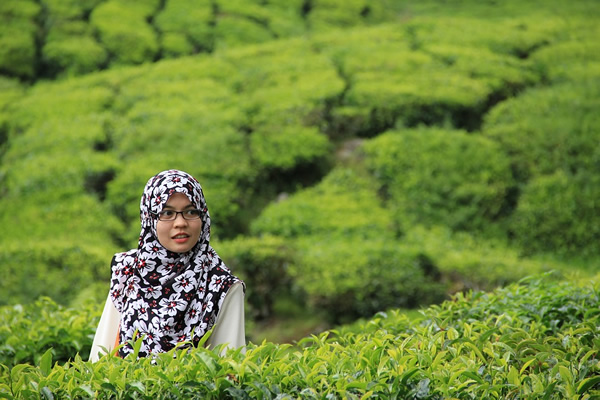 Woman in tea field in Malaysia