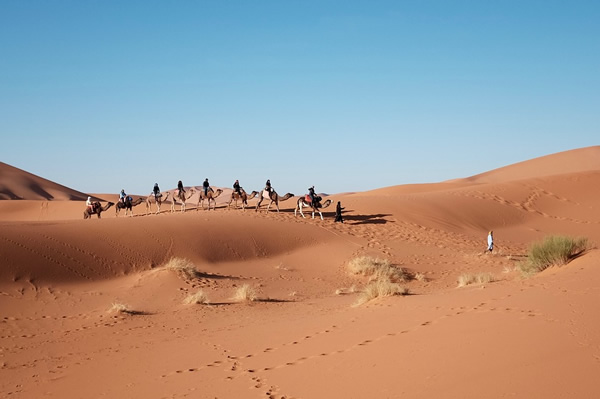 Travel in Egypt amid the sand dunes