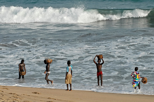 Children collecting mussels in Ghana