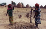 Study Abroad in Niger