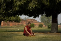 Study Buddhism in India